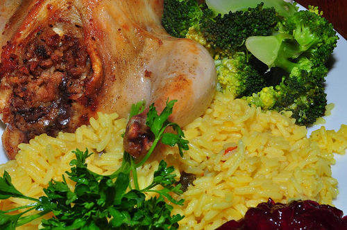 JeffreyW shoots a cornish game hen, served with broccoli and rice