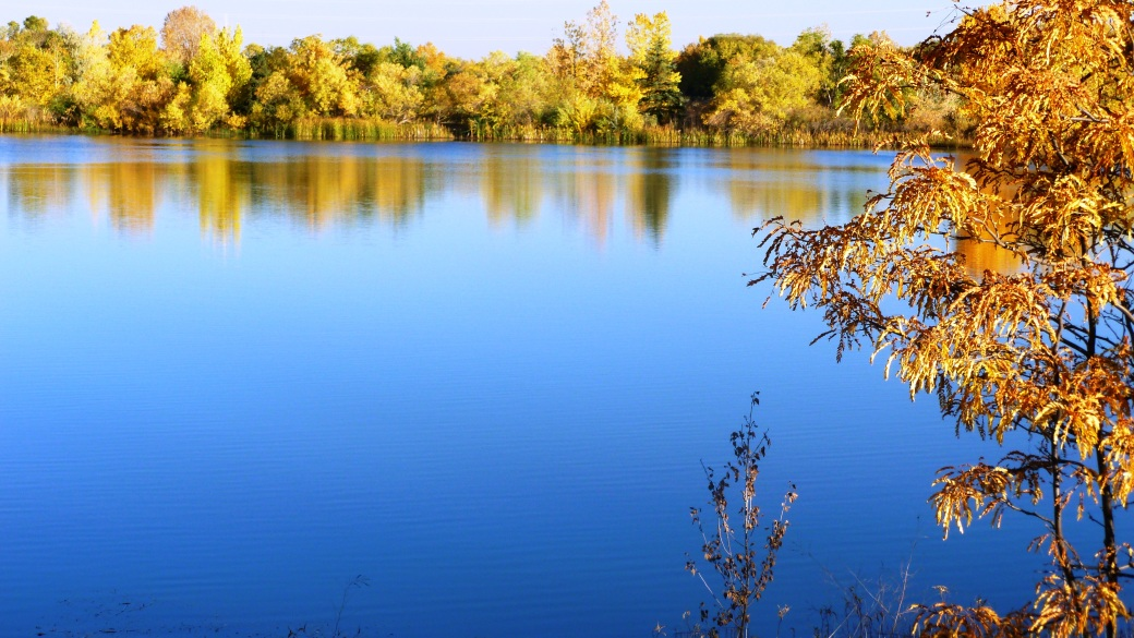 Golden Ponds, Longmont, CO
