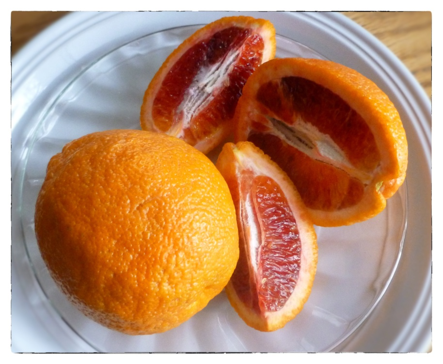 Blood Orange1snap