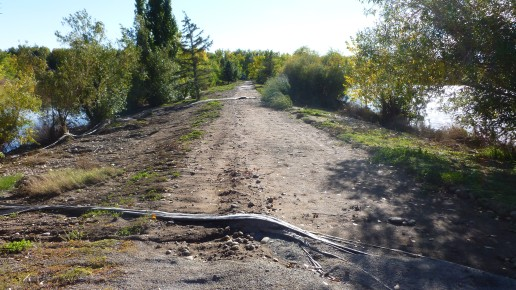 Path between ponds 2 and 3 (1)