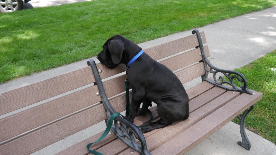 Bixby Bench