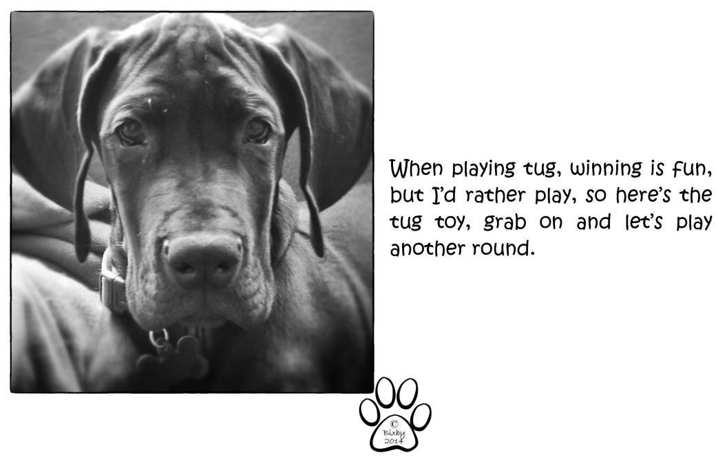 Life According to Bixby Tug