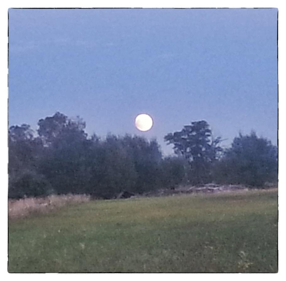 Moonrise 1a 9 27 15